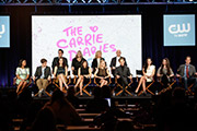 CW 2013 Winter TCA Panel